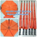 Payung Cantik